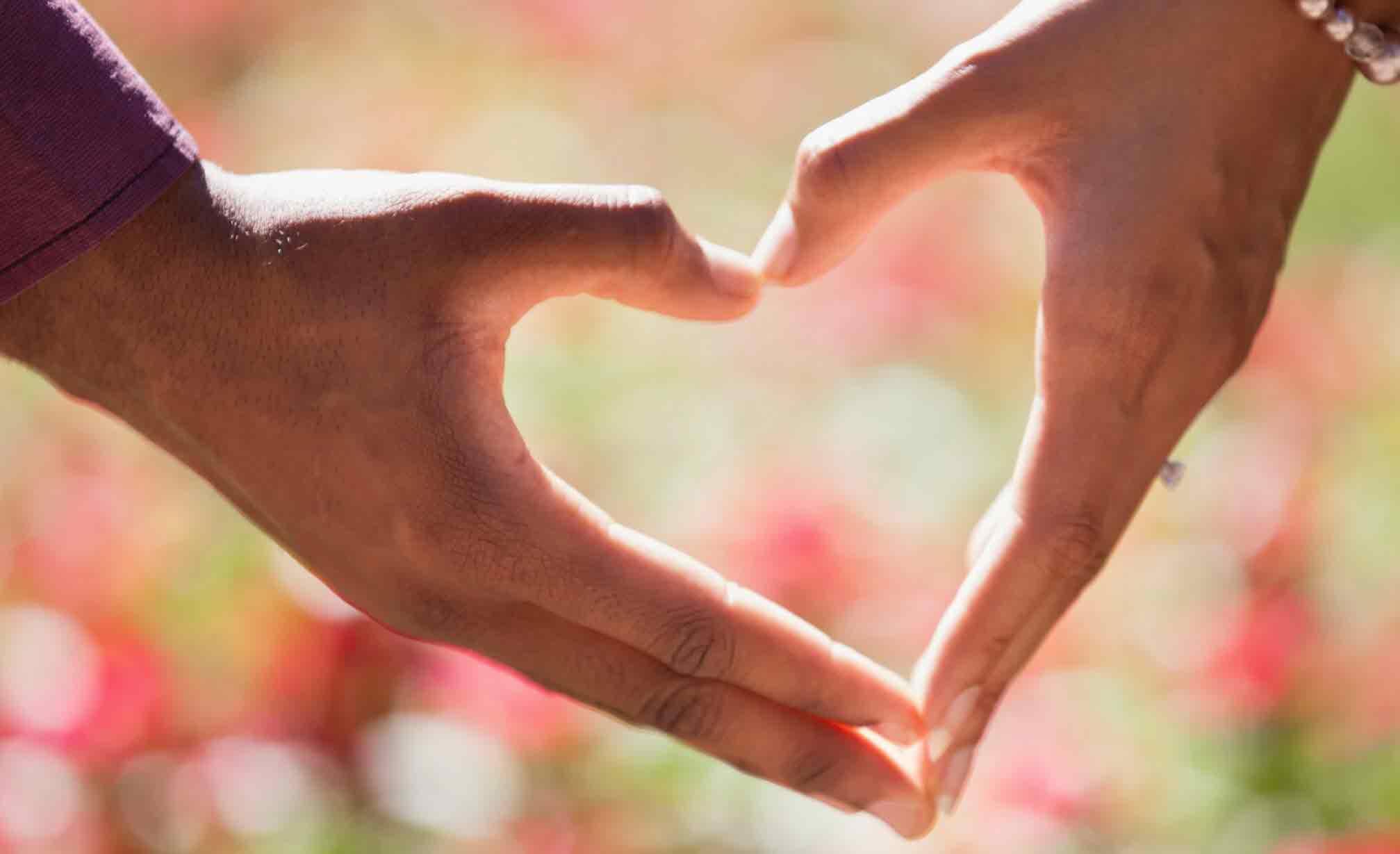 סודות הטארוט: מסרים לזוגיות על פי ארבעת היסודות